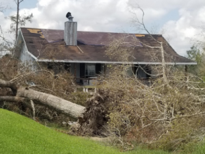 Message From Julie: Leadership Lessons From Hurricane Laura 1
